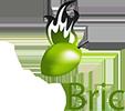 OlioBric Grillbriketts aus Olivenkernen 3kg
